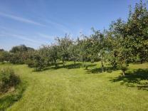 Orchard Hjortshoj